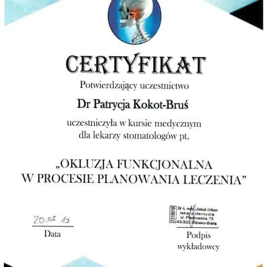 Certyfikat Okluzja funkcjonalna w procesie planowania leczenia